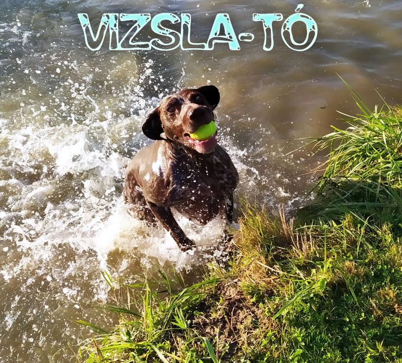 Vizsla-Tó
